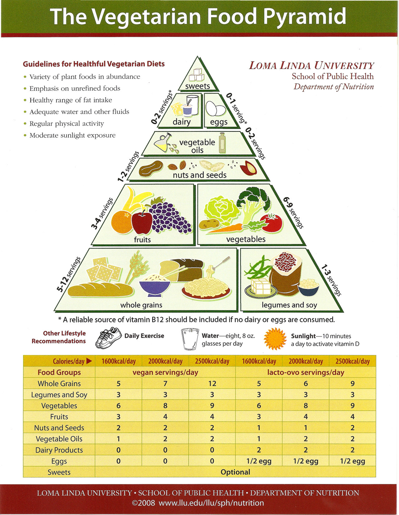 Theme asian food guide pyramids 1051 amusing