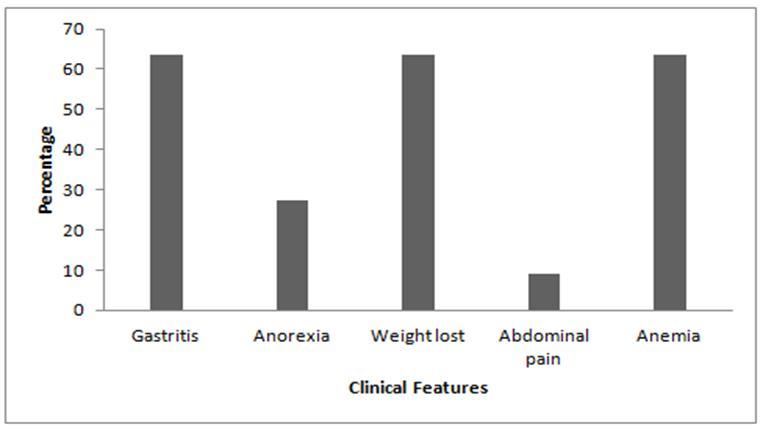 figure 1 clinical features associated with ebv infection associated with gastric carcinoma